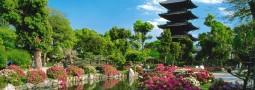 Кіото: столиця миру та спокою